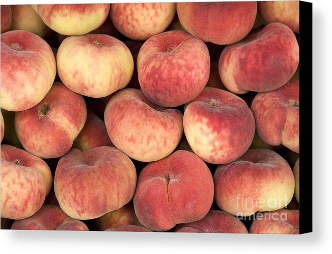 Agriculture Canvas Print featuring the photograph Peaches by Jane Rix
