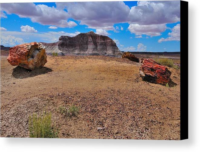 Desert Canvas Print featuring the photograph Petrified Forest Np by Gene Sherrill