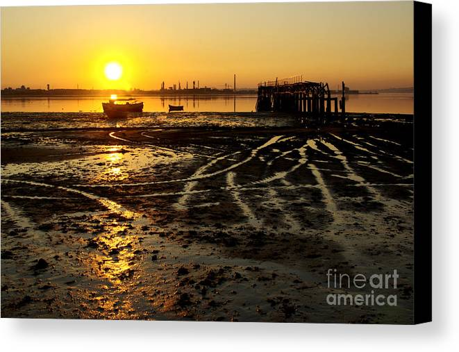 Algae Canvas Print featuring the photograph Pier At Sunset by Carlos Caetano