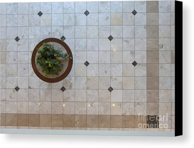 Architecture Canvas Print featuring the photograph Potted Plant In Foyer Floor From Above by Will & Deni McIntyre