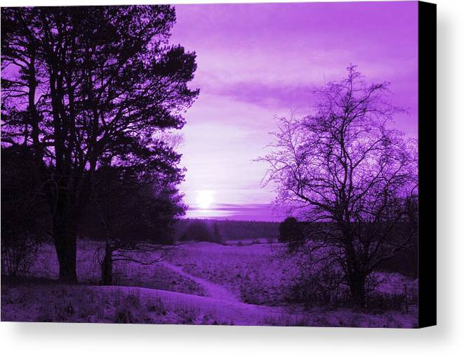 Winter Canvas Print featuring the photograph Purple Winter by Charlotte Therese Bjornstrom