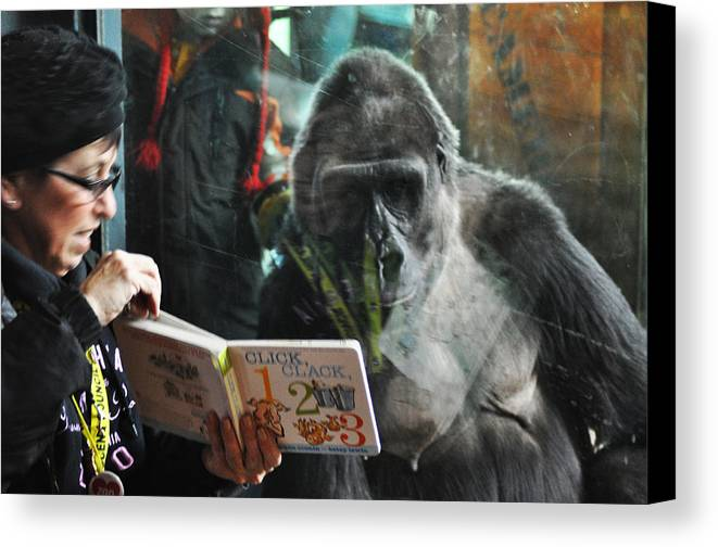 Reading Is Fundamental Canvas Print featuring the photograph Reading Is Fundamental by Bill Cannon