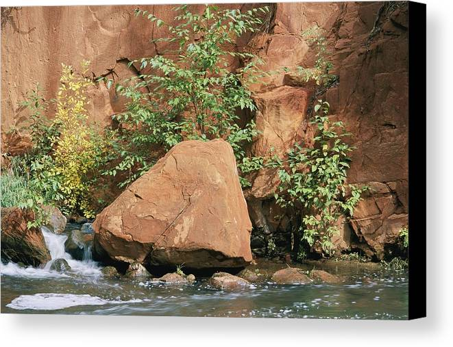 Oak Creek Canyon Canvas Print featuring the photograph Red Rocks, Fall Colors And Creek, Oak by Rich Reid