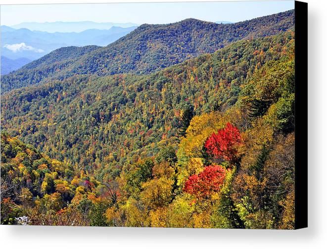 Season Canvas Print featuring the photograph Red Trees by Susan Leggett