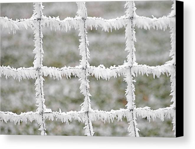 Frost Canvas Print featuring the photograph Rime Covered Fence by Christine Till