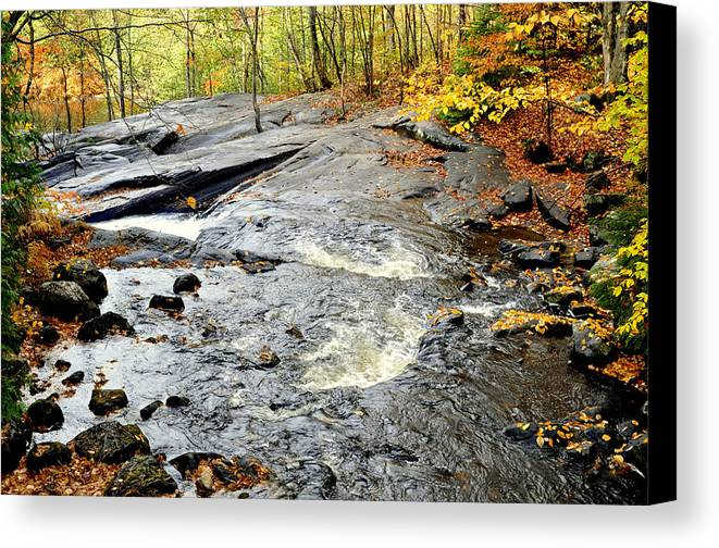 Water Canvas Print featuring the photograph Riverbed by Douglas Pike