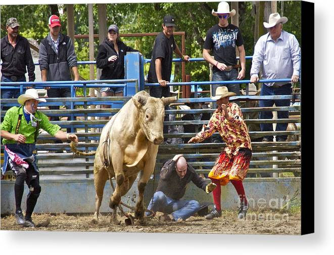 Photography Canvas Print featuring the photograph Rodeo Clowns To The Rescue by Sean Griffin
