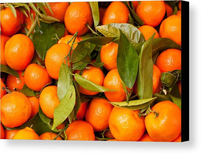 Abstract Canvas Print featuring the photograph Satsumas by Tom Gowanlock