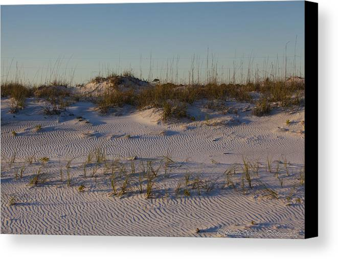 Sand Dunes Canvas Print featuring the photograph Seaside Dunes 4 by Charles Warren