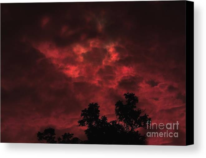 Sky Canvas Print featuring the photograph September Sky by Marjorie Imbeau