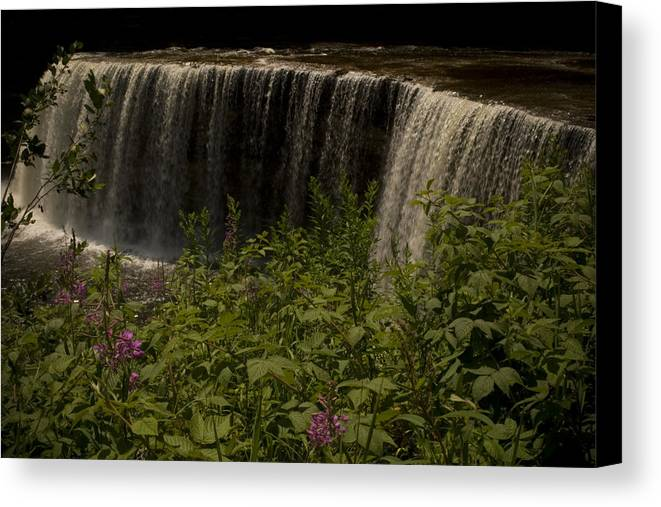 Waterfall Canvas Print featuring the photograph Serenity by Stacy Lenz