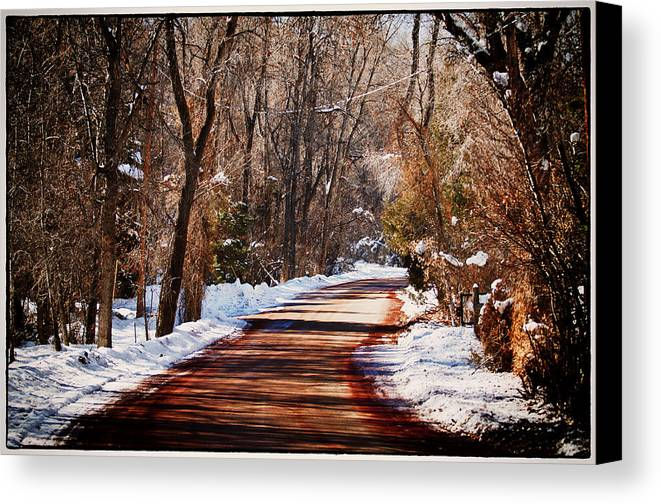 Road Canvas Print featuring the photograph Shadowy Path by Lisa Spencer