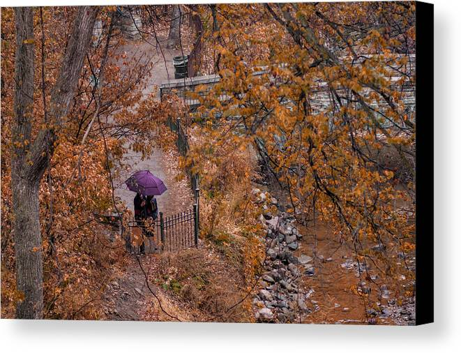 Autumn Canvas Print featuring the photograph Alone Together by Tom Gort
