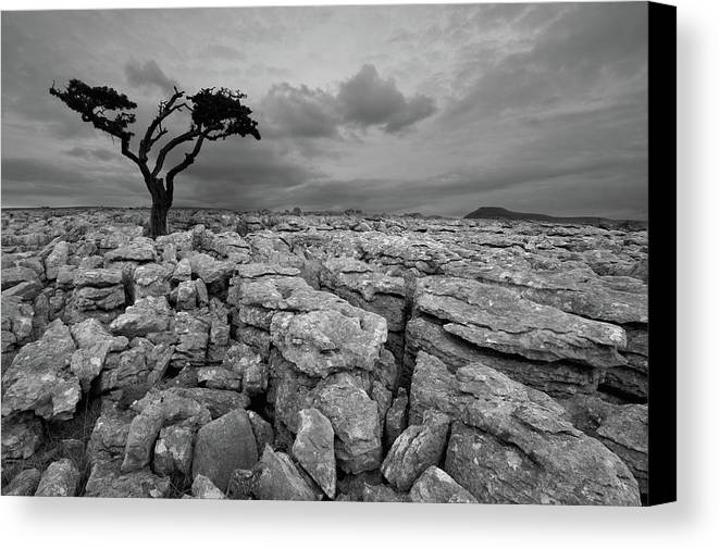 Black And White Yorkshire Prints