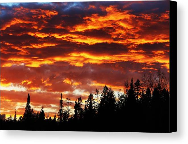 Trees Canvas Print featuring the photograph Sky On Fire by Corinne Boomhower