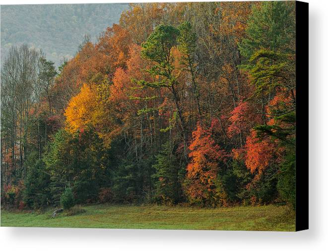 Cades Cove Canvas Print featuring the photograph Smokies Color Palette by Charlie Choc