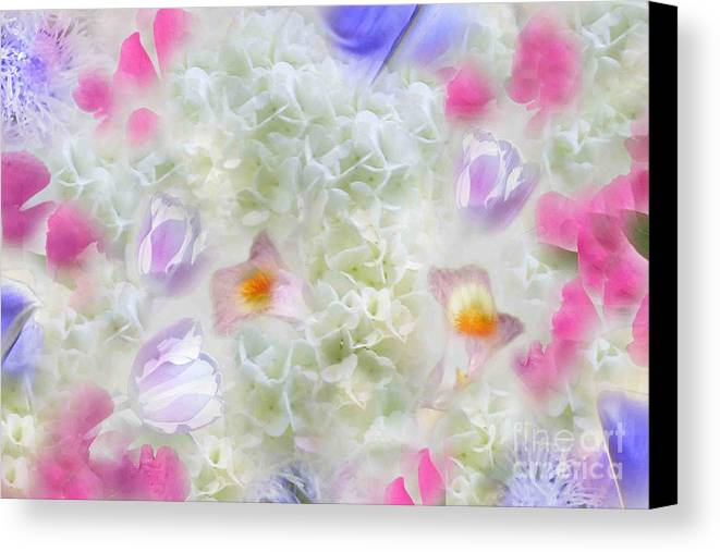 Spring Is In The Air Canvas Print featuring the photograph Spring Is In The Air by Cindy Lee Longhini