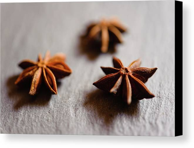 Horizontal Canvas Print featuring the photograph Star Anise On Slate Tray by Alexandre Fundone