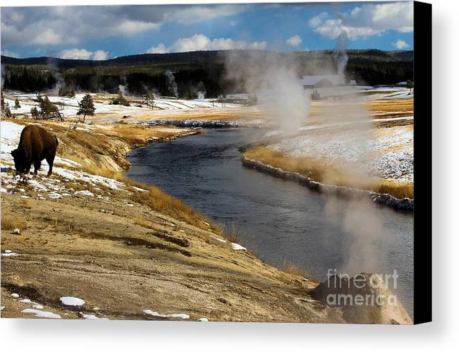 Yellowstone National Park Canvas Print featuring the photograph Steam Heating by Adam Jewell