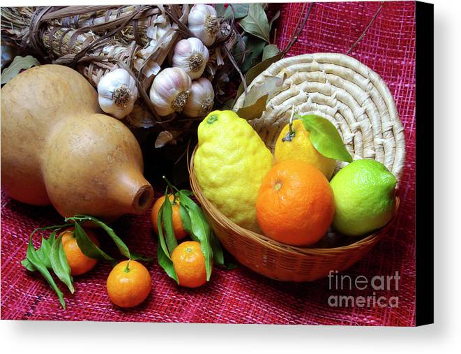 Arrangement Canvas Print featuring the photograph Still-life by Carlos Caetano