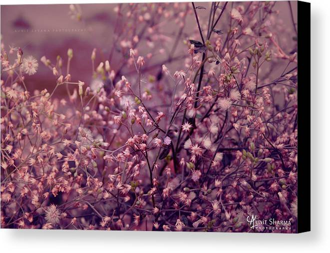 Green Canvas Print featuring the photograph Summer by Aunit Sharma