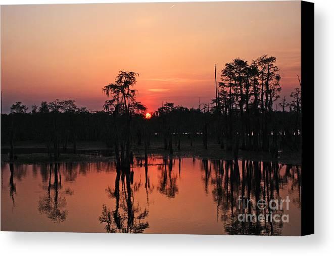 Swamp Sunset Photography Canvas Print featuring the photograph Swamp Sunset by Luana K Perez