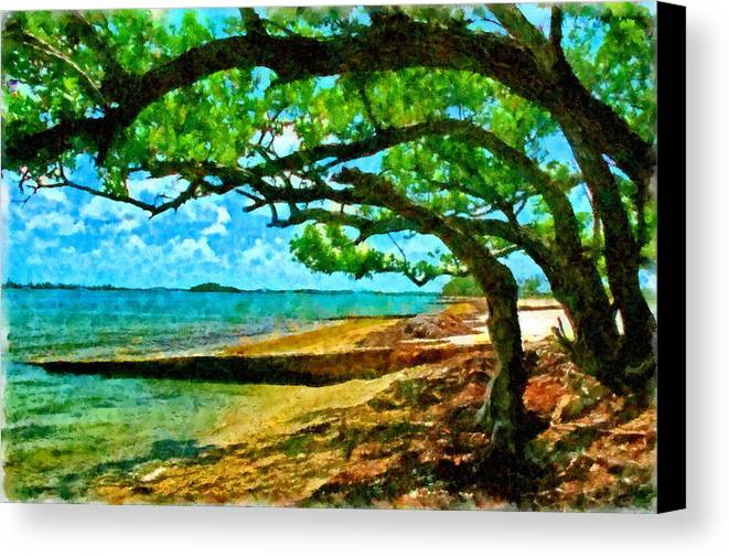 Florida Canvas Print featuring the photograph The Cove by Tom McKim