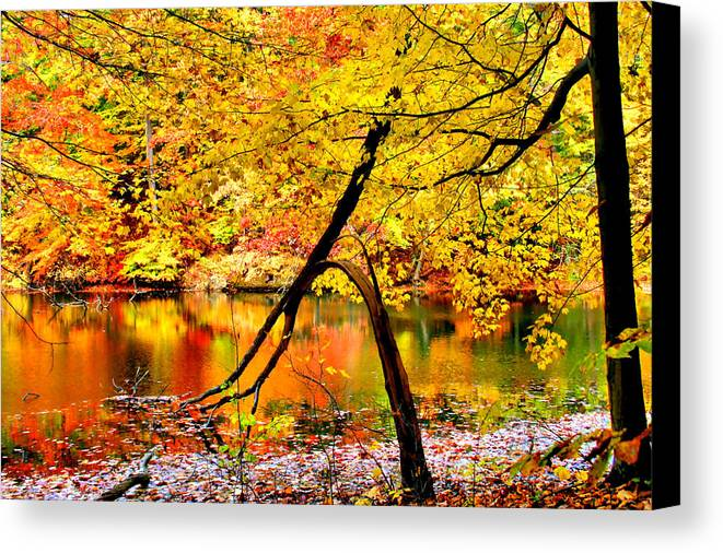 Autumn Canvas Print featuring the photograph The Final Bough by Kristin Elmquist