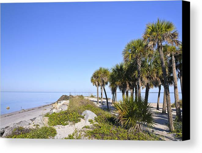 Florida Landscapes Canvas Print featuring the photograph The Point At Sunset Park by Betty Eich