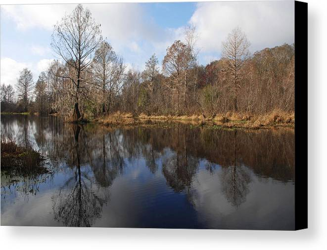 Florida Landscapes Canvas Print featuring the photograph The River Styx by Betty Eich