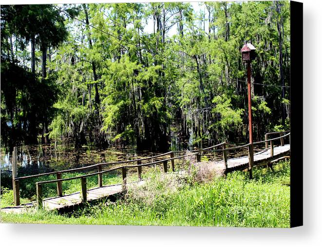 Lake Canvas Print featuring the photograph The Walkway by Kathy White