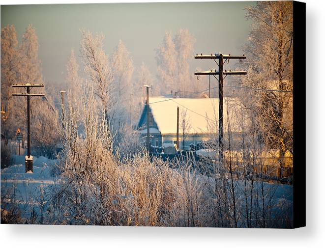 Winter Canvas Print featuring the photograph The Winter Country by Nikolay Krusser