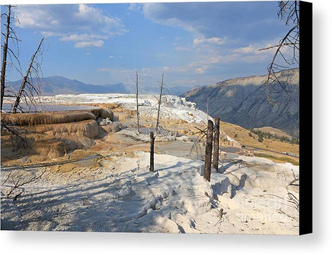 Nature Canvas Print featuring the photograph Travertine Limestone Terraces by Mark Taylor