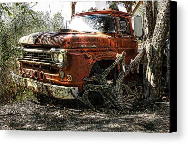 Ford Canvas Print featuring the photograph Tree Truck by Peter Chilelli