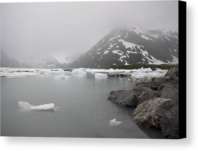 Canvas Print featuring the photograph Under The Veil Of Fog by Steven Colella