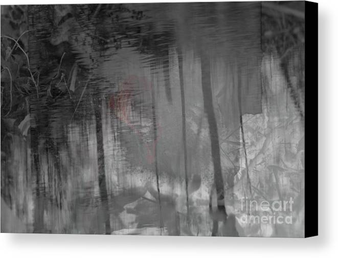 Veil Canvas Print featuring the photograph Veiled Bride by Affini Woodley