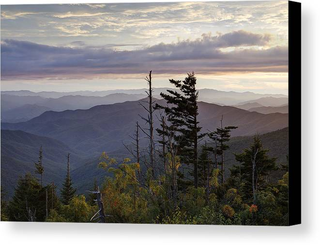 Clingmans Dome Canvas Print featuring the photograph View From Clingmans Dome 4 by Mike Aldridge