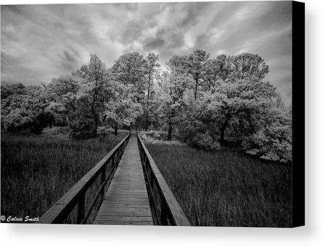 Canvas Print featuring the photograph Wadmalaw In Ir by Calvin Smith