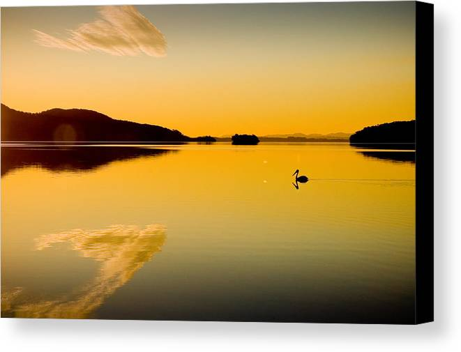 Lake Canvas Print featuring the photograph Wallis Lake 5521 by Karl Bayer