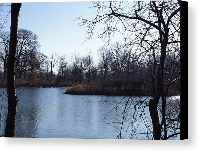 Island Canvas Print featuring the photograph Wooded Island Exposition by Gregory Lafferty
