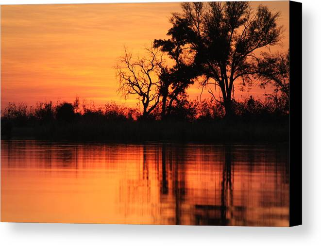 Africa Canvas Print featuring the photograph World On Fire by Kristen Macks