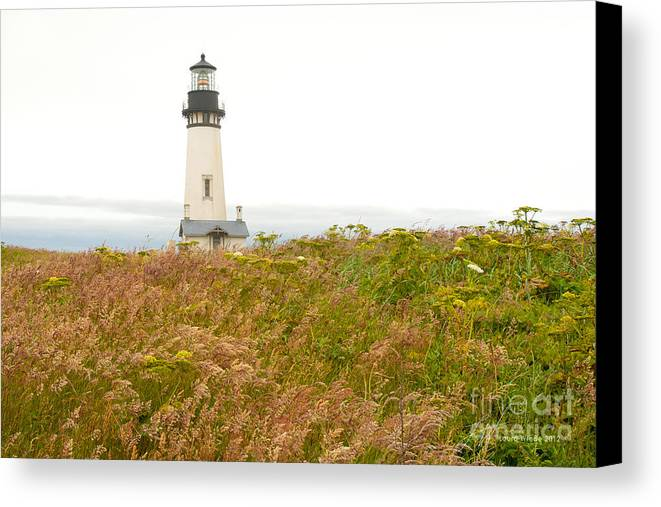 Yaquina Head Lighthouse In Oregon Canvas Print featuring the photograph Yaquina Head Lighthouse In Oregon by Artist and Photographer Laura Wrede