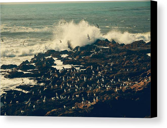 Cambria Canvas Print featuring the photograph You Came Crashing Into My Heart by Laurie Search