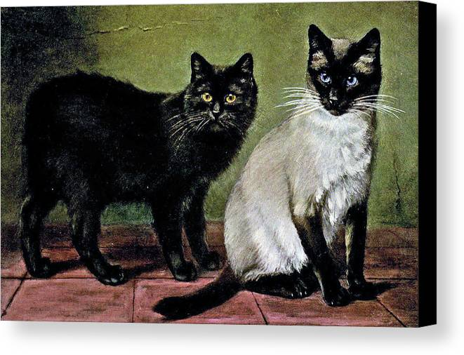 Cats Canvas Print featuring the painting Black Manx And Siamese Cats by W Luker Junior