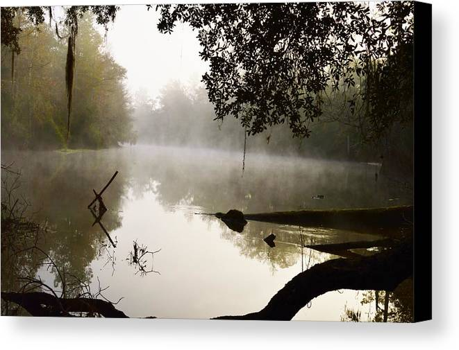 Fog And Light Canvas Print featuring the photograph Fog And Light by Warren Thompson