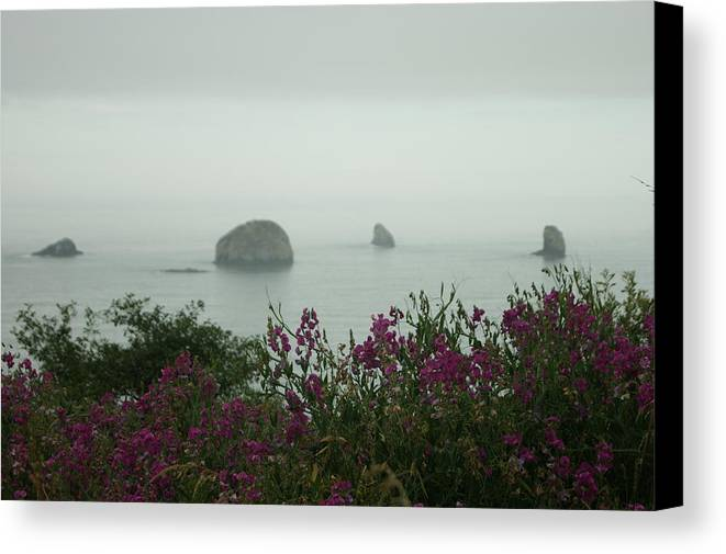 Coast Canvas Print featuring the photograph Foggy Viewpoint by Beth Collins