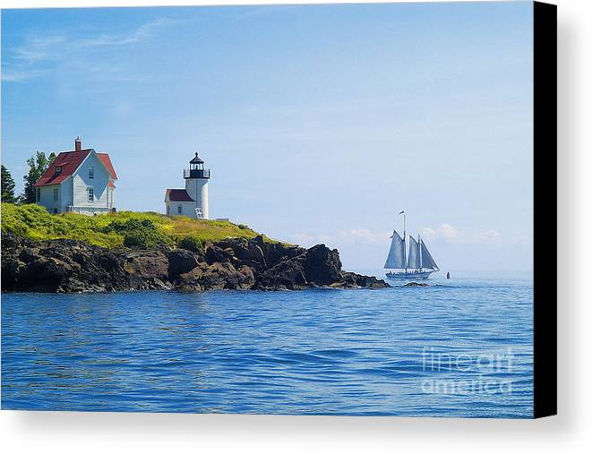 Sailing Canvas Print featuring the photograph Sails Off Curtis Island Light by Neil Doren