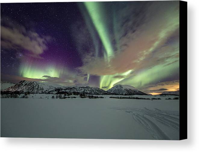 Frank Olsen Canvas Print featuring the photograph Snowy Field by Frank Olsen