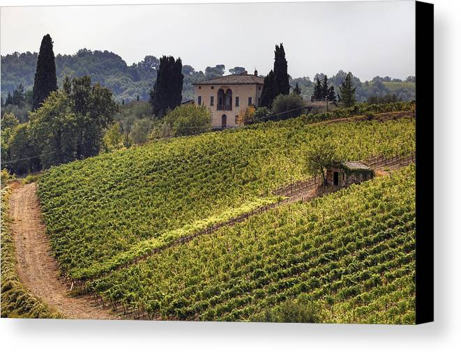 Montalcino Canvas Print featuring the photograph Tuscany by Joana Kruse