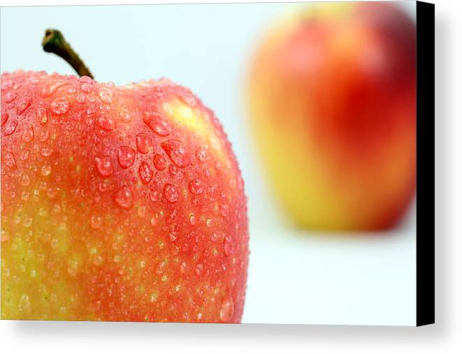 Apple Canvas Print featuring the photograph Two Red Gala Apples by Paul Ge